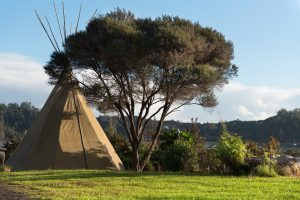 8-tipi-with-view-background-002